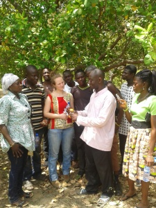 Students learning about varieties of cashew