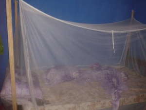 Always sleep with a mosquito net