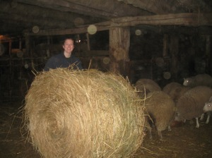 You may not recognize me here, on my family sheep farm back home.